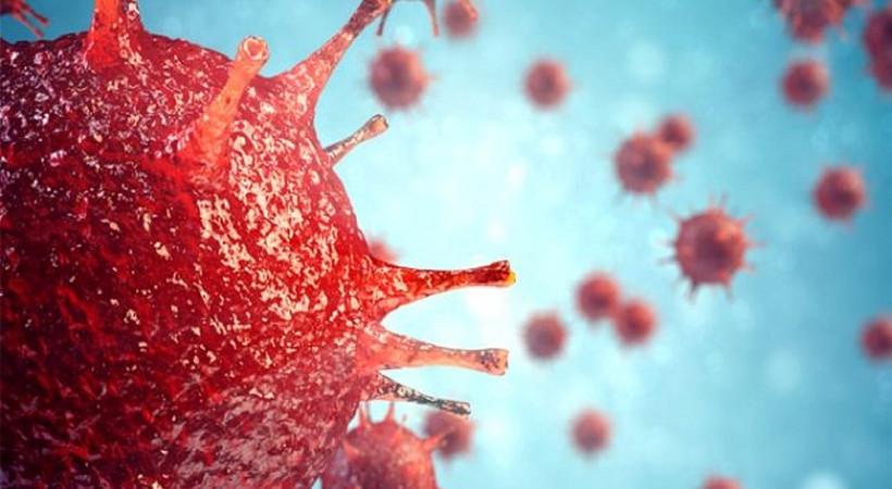 Coronavirüs'ün medya karnesi! Rekor sayıya ulaştı