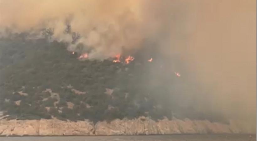 Bodrum Mazıköy'de bugün yeniden  şiddetlenen yangın tüm hızıyla sürüyor. Medyatava özel görüntüleri...