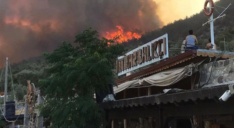 Havadan müdahalenin olmadığı Bodrum yangını Çökertme'yi de küle çevirdi... İşte saat 20.00 itibariyle son durum...