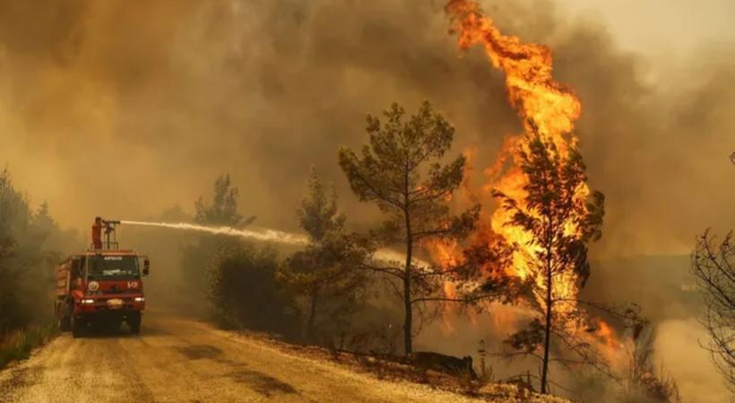 Türkiye'den yangınlarla mücadele için AB'ye destek talebi
