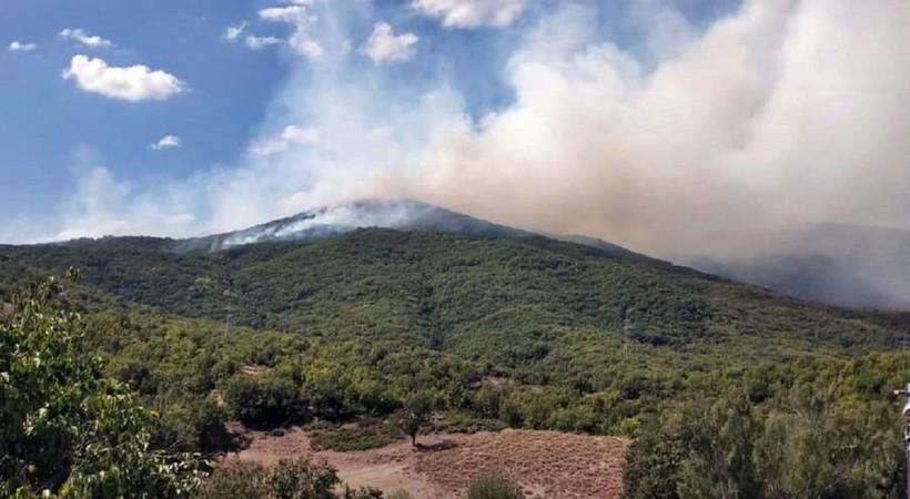 Tunceli'deki örtü yangını devam ediyor