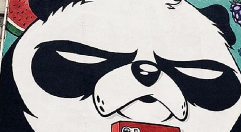 Kızgın pandalar İstanbul sokaklarında