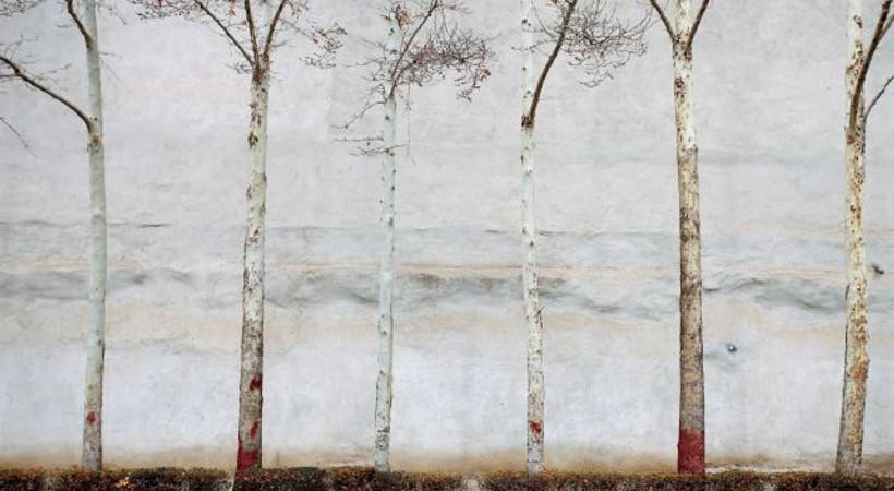 Abbas Kiarostami'nin eserleri sanatseverlerle buluşuyor