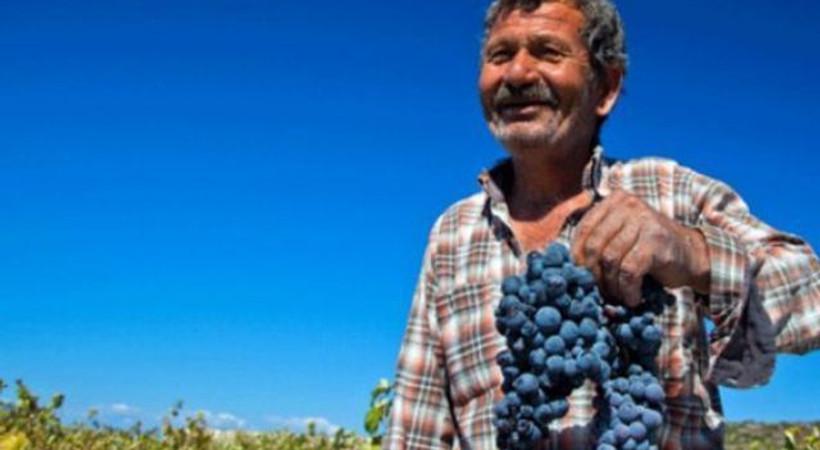 Economist yazdı: 'AKP'den şarap sektörüne içeride baskı, dışarıda destek!'