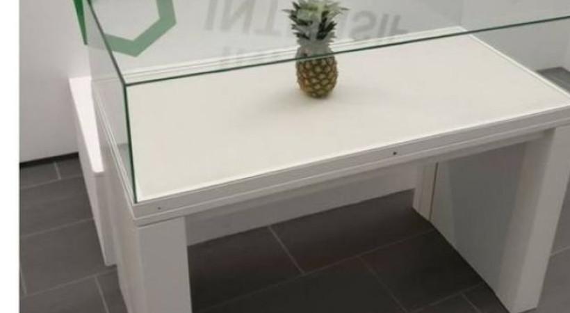 Şaka için sergiye bırakılan ananas, sanat eseri diye cam vitrine alındı