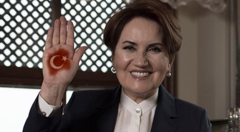 Meral Akşener'in kuracağı partinin logosu belli oldu!
