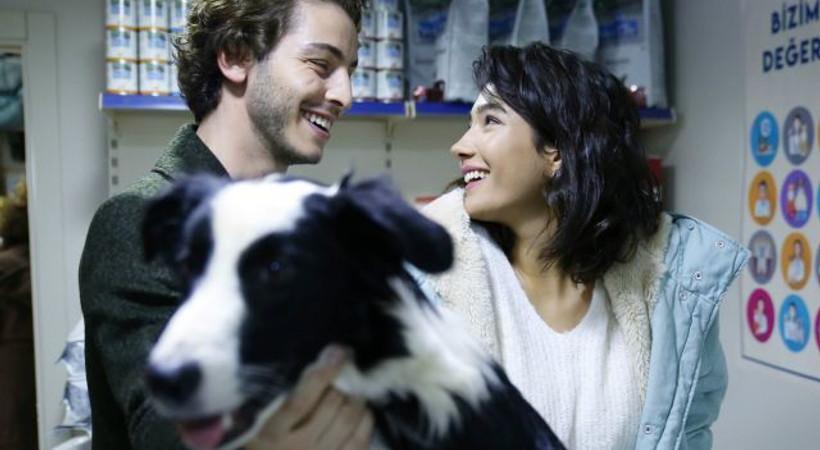 Boran Kuzum ve Aybüke Pusat, sokak hayvanlarına dikkat çekecek!