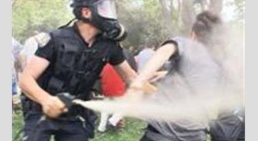 Nobelli bilim insanlarından Türkiye'ye 'Gezi' kınaması!
