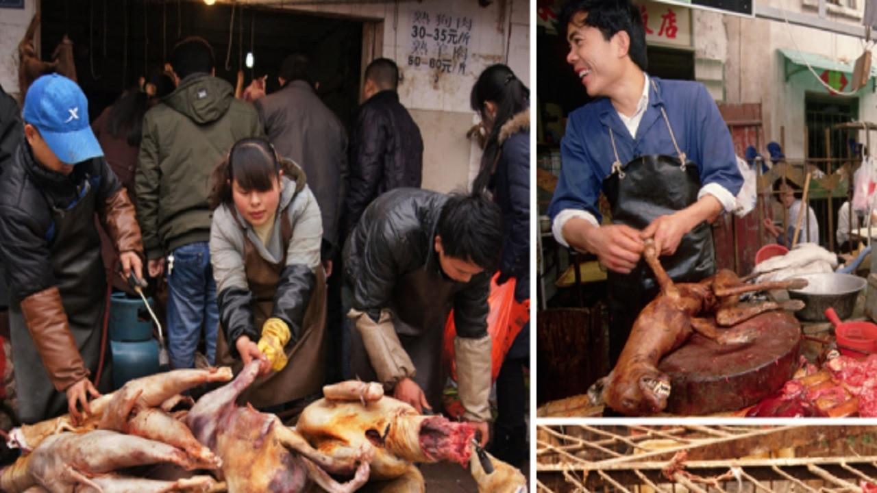 Mide bulandıran görüntülere Çin'den itiraz geldi